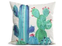 Párnahuzat kaktusz